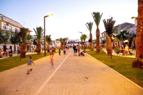 Palm Tree Walk, Herrera del Duque